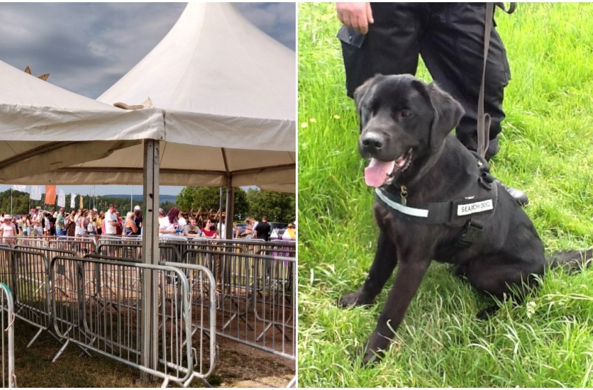 Police: Drugs dogs will be on the gates at Creamfields and everyone will be searched