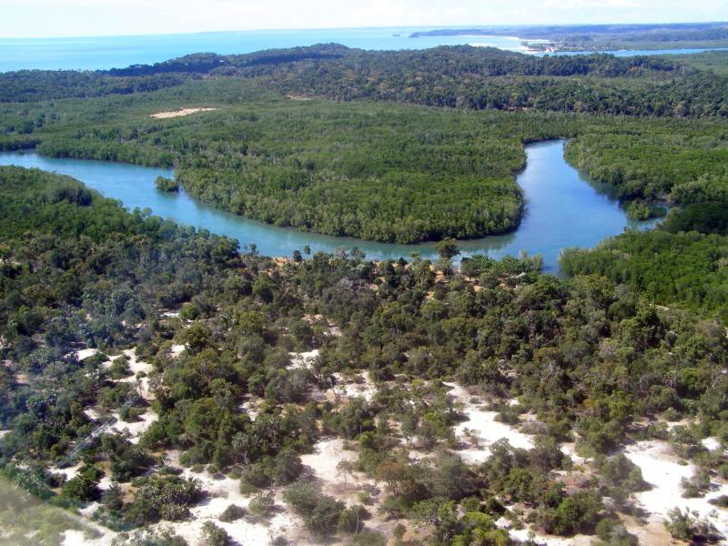 Anjajavy Forest, inset by a swath of mangrove riparian forest, Madagascar