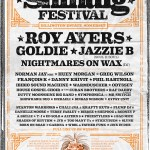 Shindig Festival 2020 line-up poster