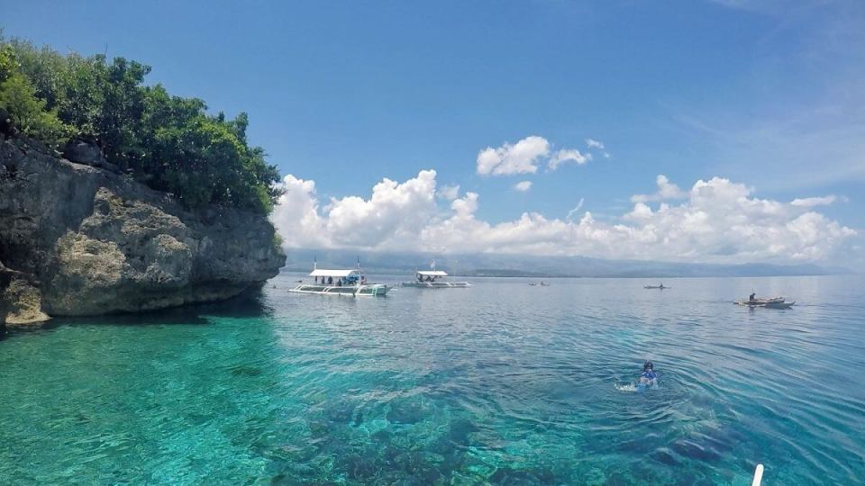 Moalboal's Best: Pescador Island and Sardines Run