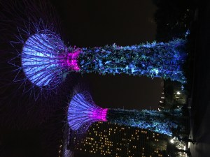 Singapore | The Fickle Feet