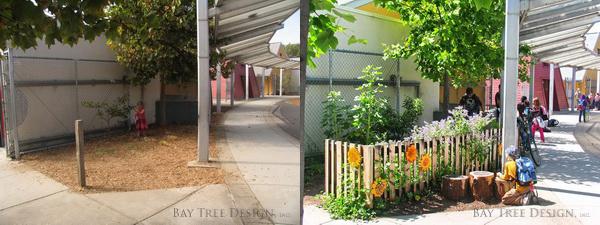 Image courtesy Sharon Danks, © Bay Tree Design, inc.
