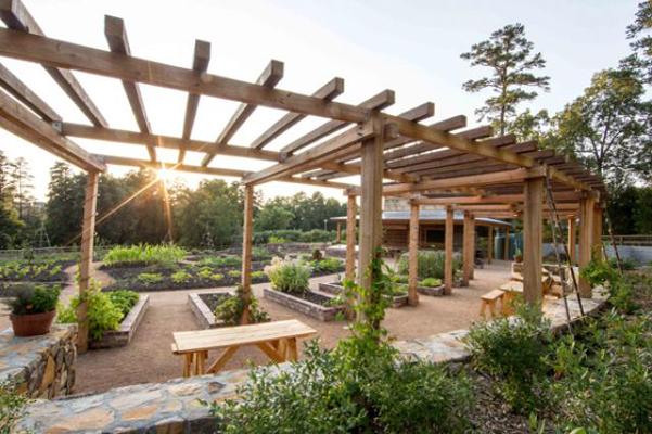 Charlotte Brody Discovery Garden at Sarah P. Duke Gardens