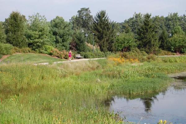 Meadow Lake / Main Parking Lot at The Morton Arboretum