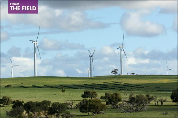 These wind turbines are located in Western Australia, about 200 km north of Perth, along Bibby Road west of Badgingarra National Park. image: Philip Bouchard via Flickr