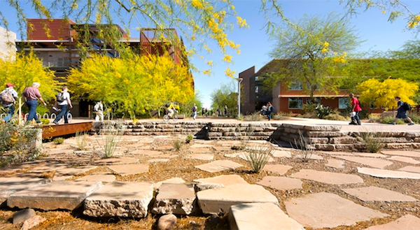 Arizona State University Polytechnic Campus by Ten Eyck Landscape Architects image: Bill Timmeman