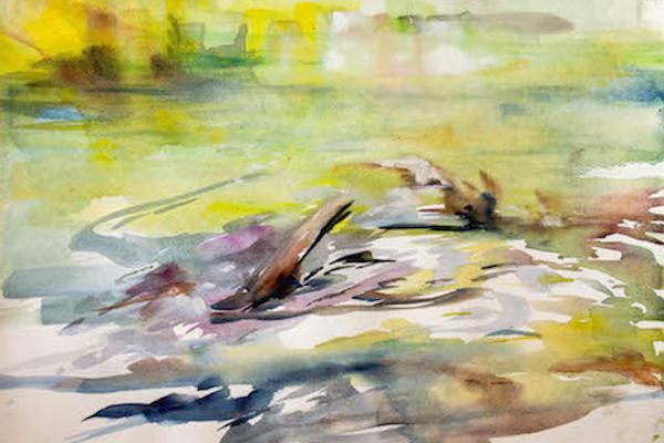 Tourbillon d'eau 20x14 image: Annette Heacox