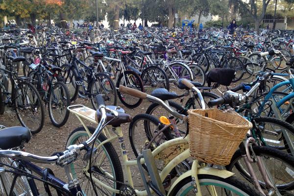 Bike parking image: Robert Segar