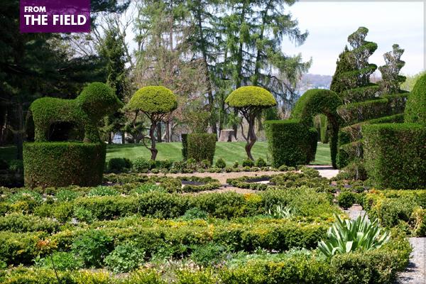Green Animals Topiary Garden in Portsmouth, Rhode Island image: Alexandra Hay