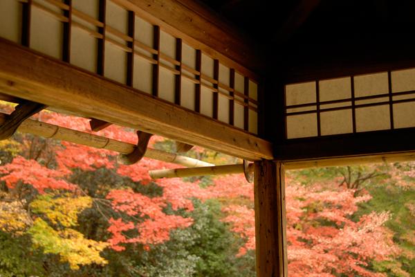 Shisen-dō Temple, Kyoto image: np&djjewell via Flickr