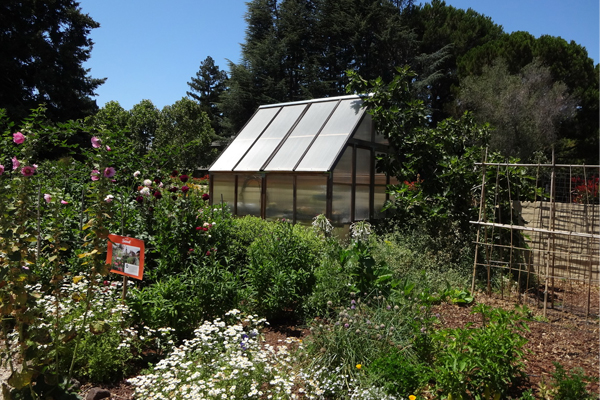 Plant experimentation area image: Chris Pattillo