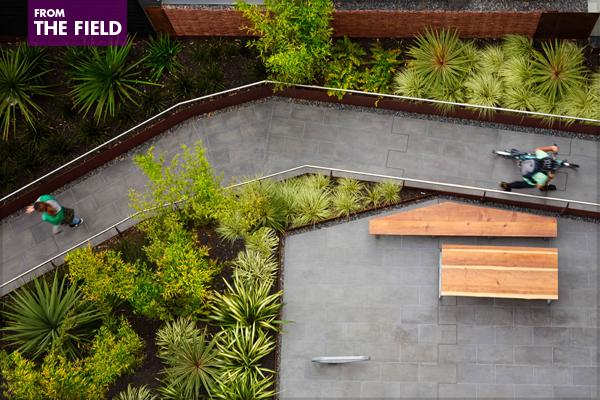 300 Ivy – 2015 Residential Design Honor Award Winner image: Bruce Damonte