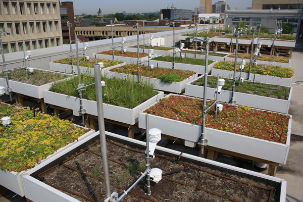Green Roof Innovation Testing (GRIT) Laboratory, 2013 Award of Excellence Winner, Research Category image: GRIT Lab