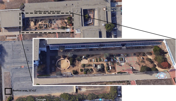 The location of the garden on the A.P. Giannini Middle School campus / image: aerial photos from Google Earth
