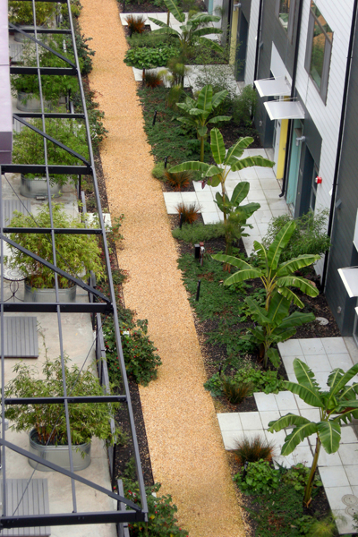 ASLA 2010 Professional Residential Design Honor Award. Pacific Cannery Lofts, Oakland, CA. Miller Company Landscape Architects / image: Miller Company