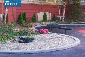 Schoolyard redesigned with student input