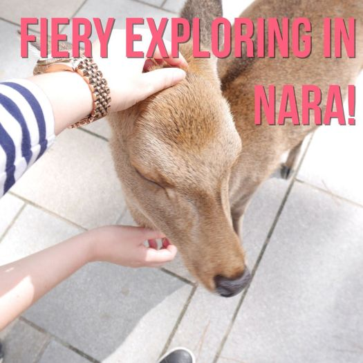 Nara @ The Fiery Explorer