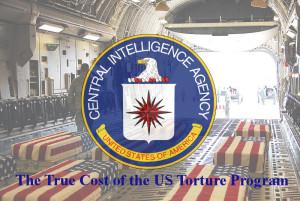 tortureprogramcost