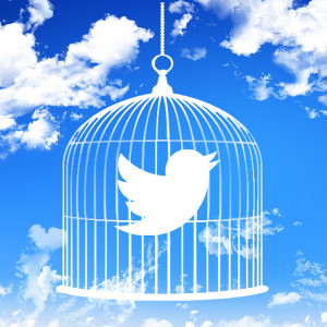 Twitter in a cage Image Source: mkhmarketing, Flickr, Creative Commons
