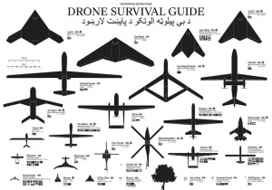 Image Source: Shodiqiel Hafily, Flickr, Creative Commons Drone Survival Guide