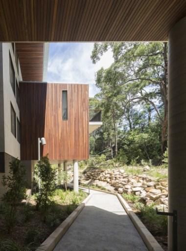 Huon pine plywood soffits and bushland path