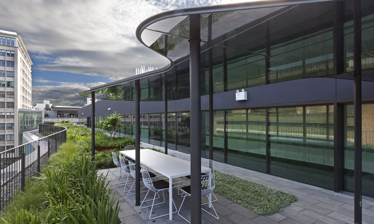 A green roof on the UTS Faculty of Science Graduate School of Health. Image: Andrew Worssam