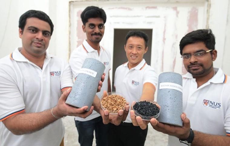 Biochar derived from wood waste