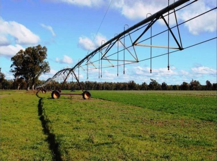 Berryjerry pivot irrigation