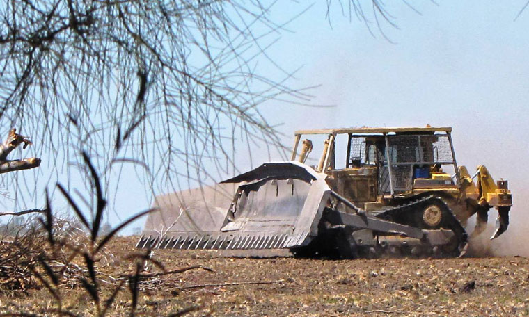 Illegal land clearing in NSW The Wilderness Society