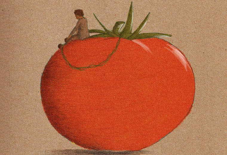 modern slavery chained to tomato