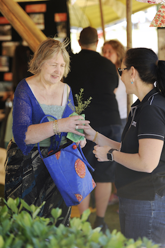 Penrith city council tree giveaway