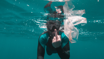 Photograph of diver surrounded by plastic, flipping the camera off