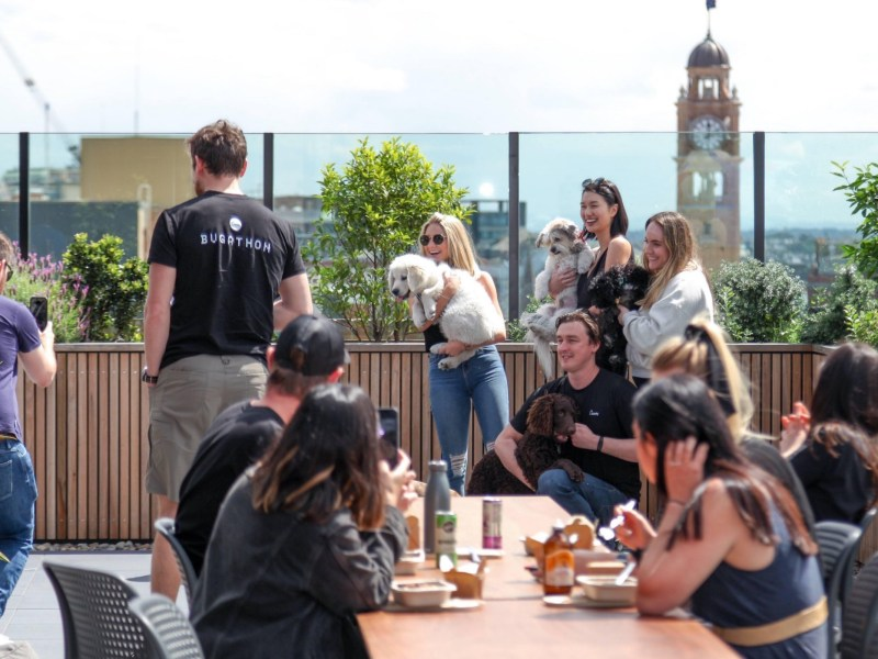 Workplace rooftop with people eating