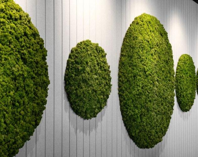 Autex acoustics wall cover