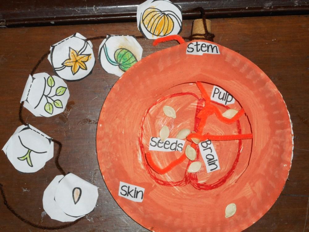 medium resolution of pumpkin science craft