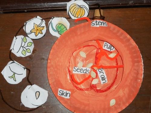 small resolution of pumpkin science craft