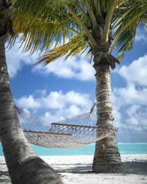 A holiday hammock on the beach
