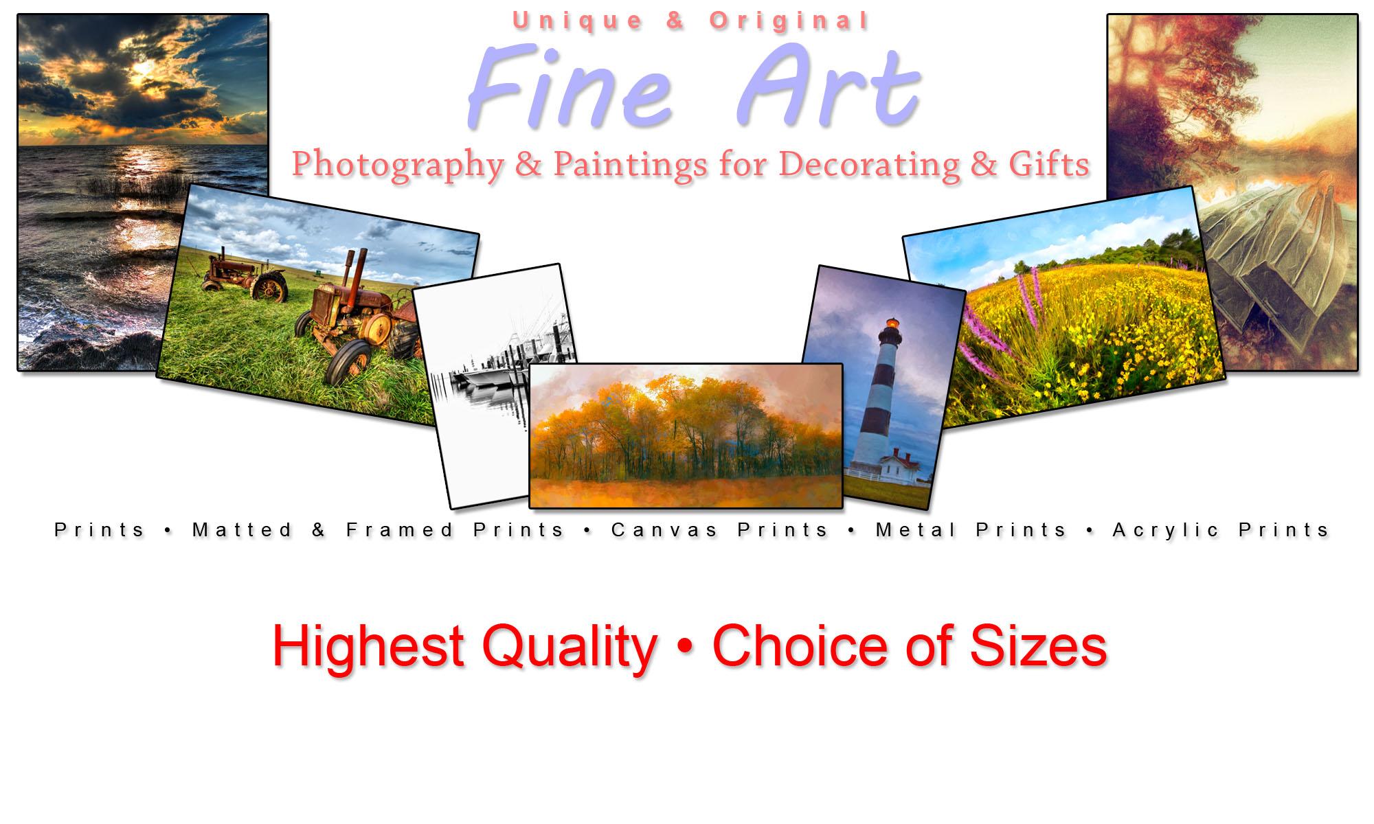 Buy Fine Art