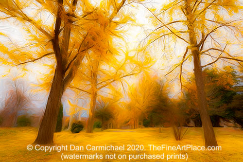 Yellow is the fall color of happiness.  A painting created from a photo.  Watermarks not on purchased art.