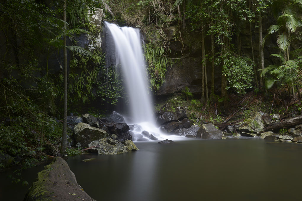 Tamborine Mountain, Queensland, Curtis Falls, waterfall