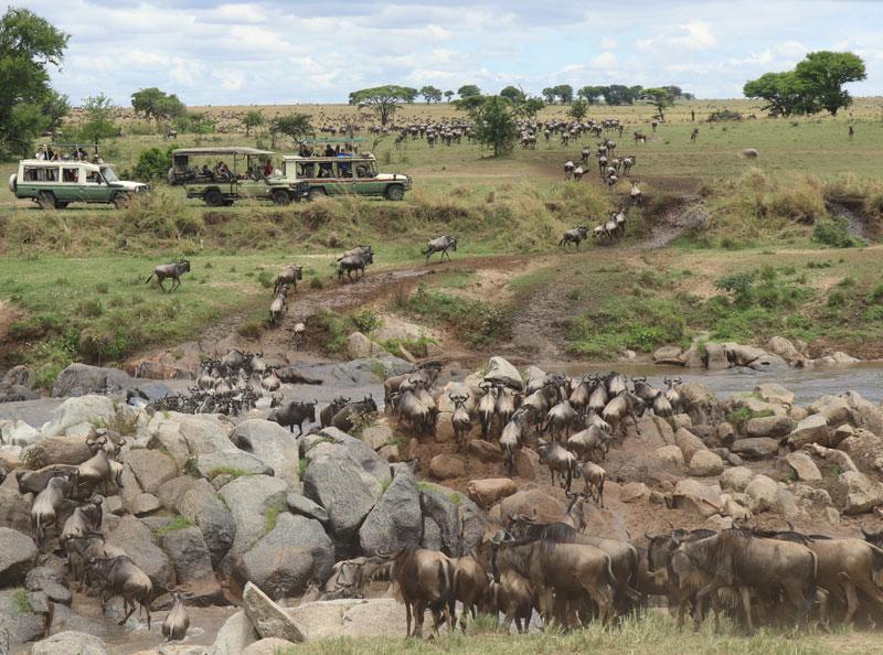 Serengeti National Park, Serengeti, Nasikia Camps, Maasai Wanderings, Classic Safari Company, Roving Ambassador
