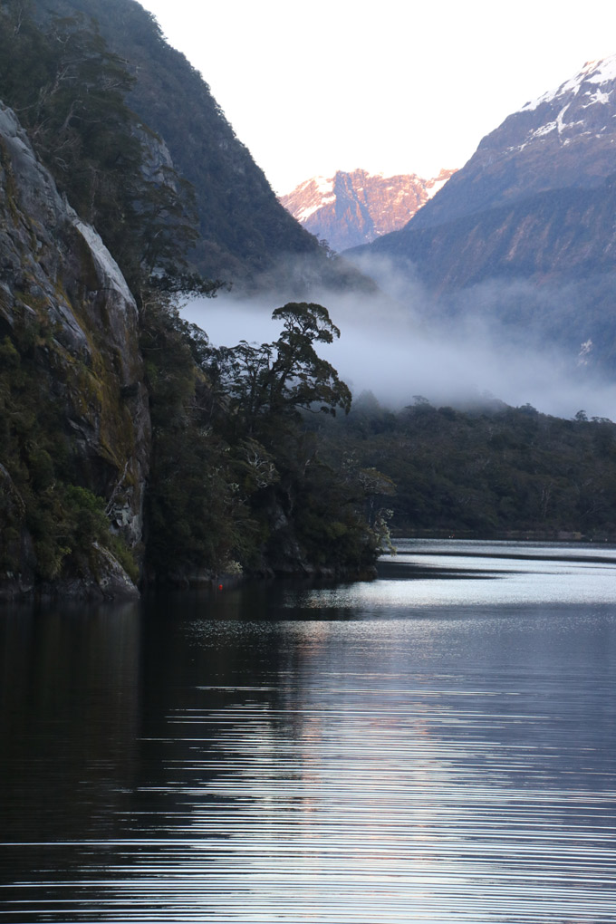 Milford Sound, New Zealand, Fiordland Jewel, kayaking Milford Sound, Fiordland Discovery