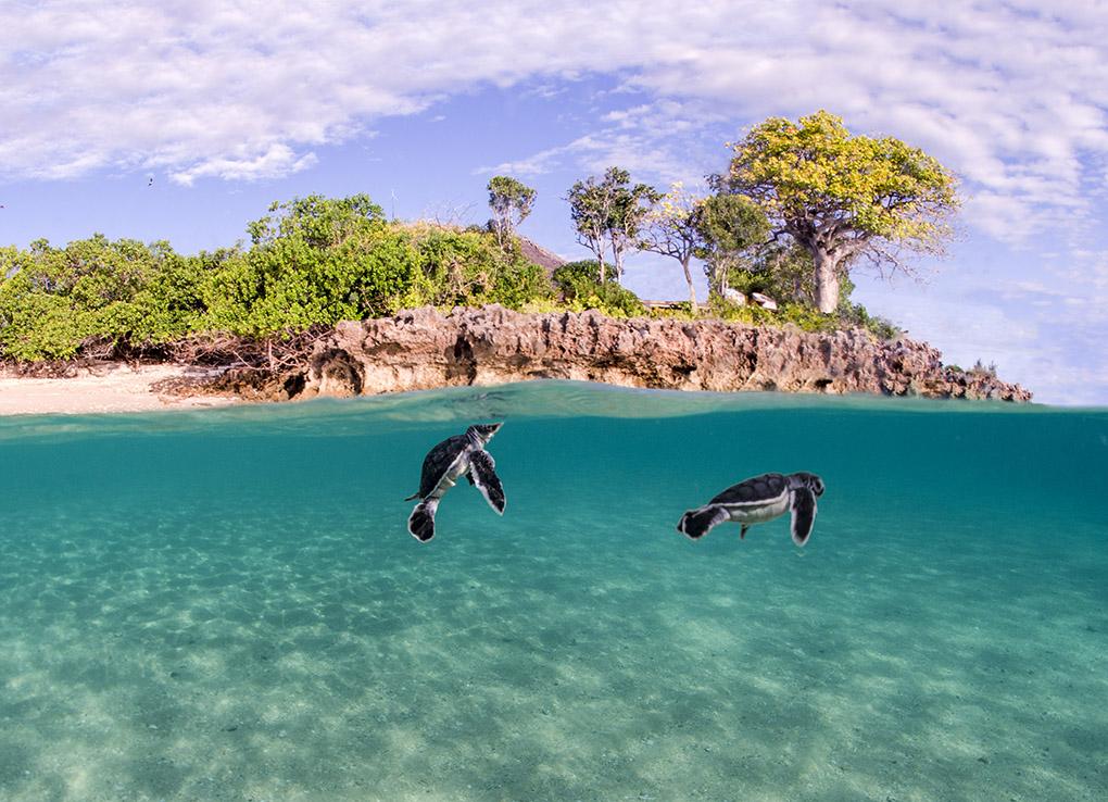 Azura Retreats, Mozambique, Africa, luxury island resort