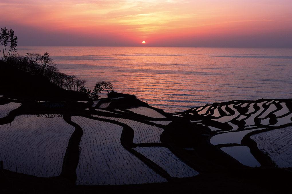 rice terraces, Noto peninsula, Ishikawa, Japan