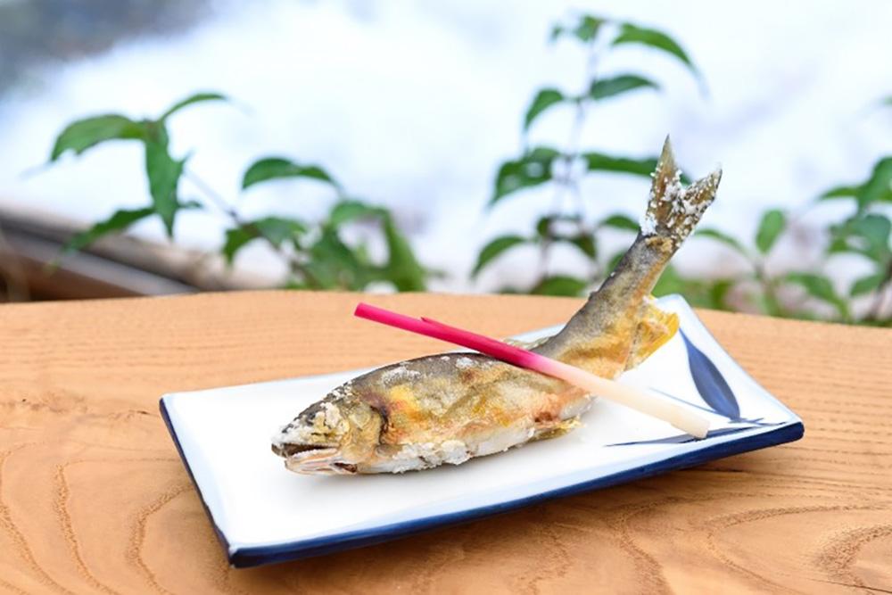 Ayu sweetfish, Gifu, Visit Gifu, Japan