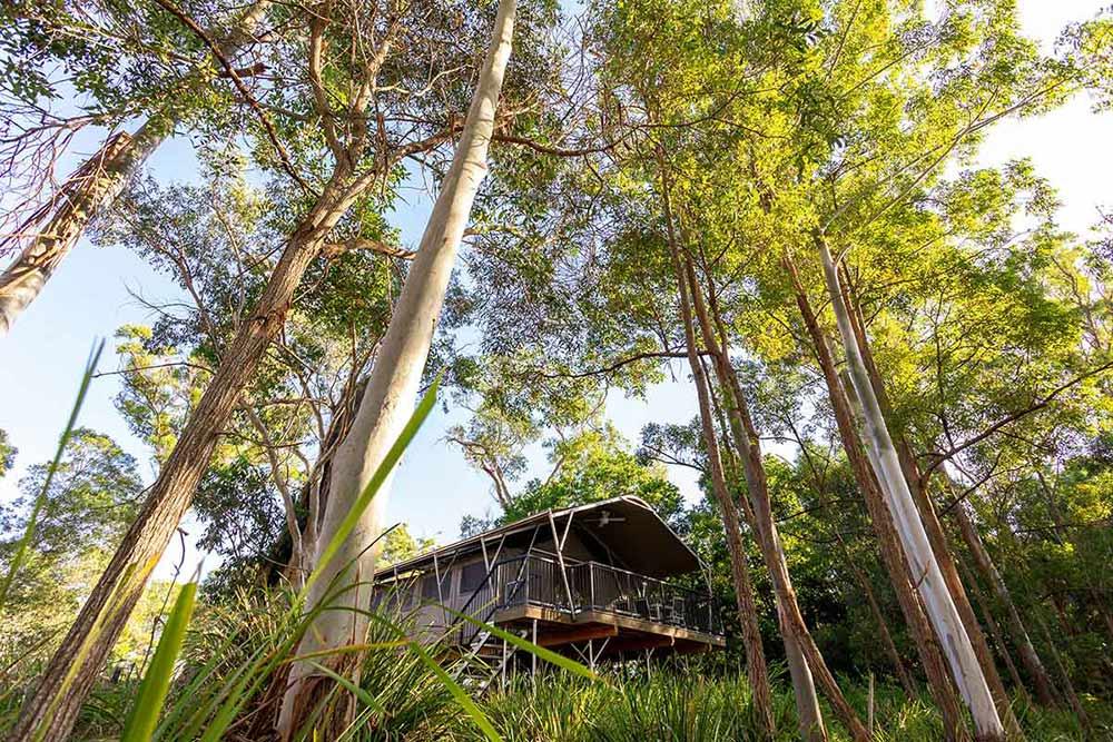 Sanctuary by Sirromet, Sirromet wines, Queensland