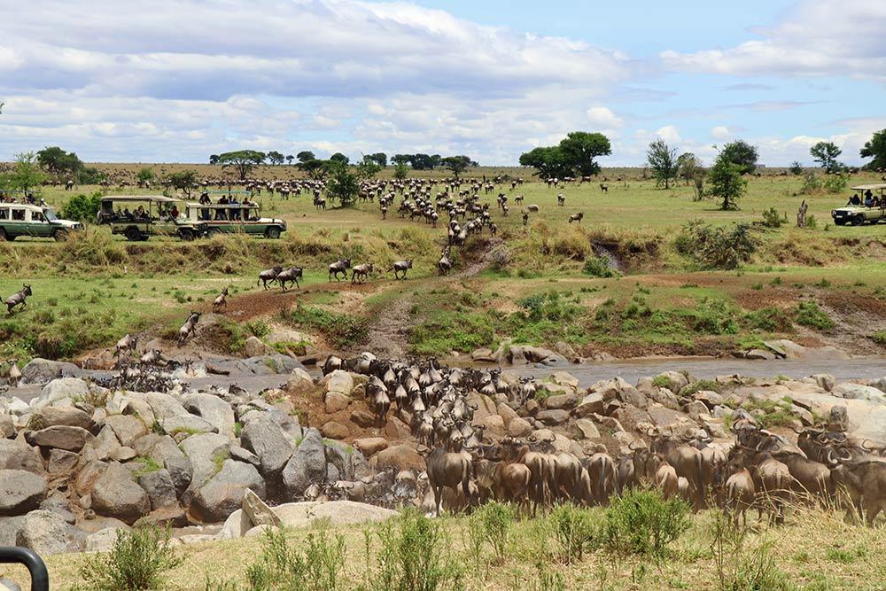 Nasikia Camps, Maasai Wanderings