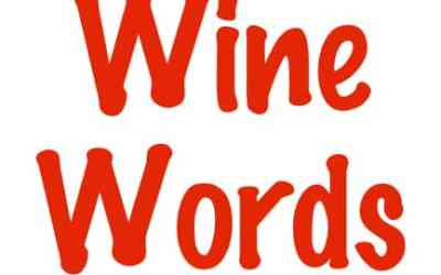Increase Your Vocabulary with Wine Words