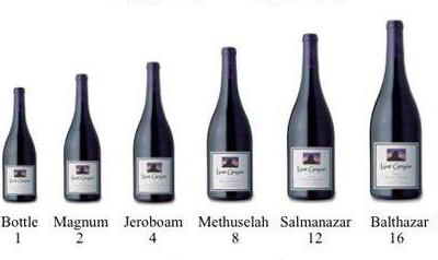 A Guide to Wine Bottles