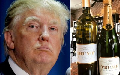 Celebrities who owns wineries – Donald Trump